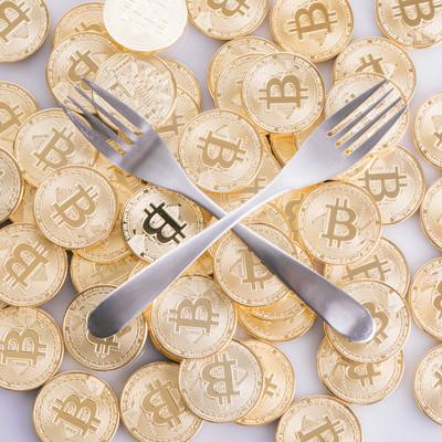 フォークコイン(仮想通貨)の写真