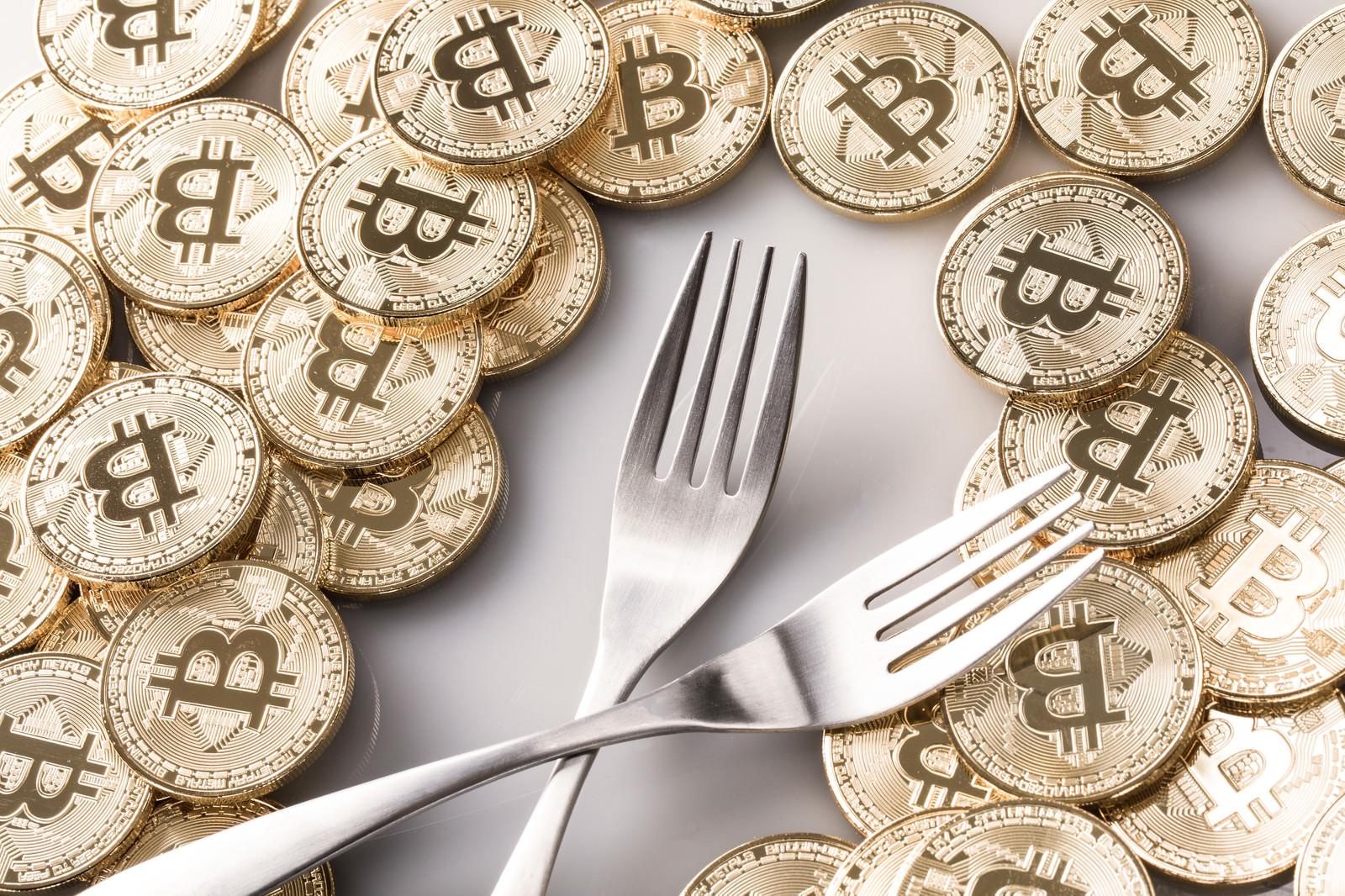 「ハードフォークとビットコイン」の写真