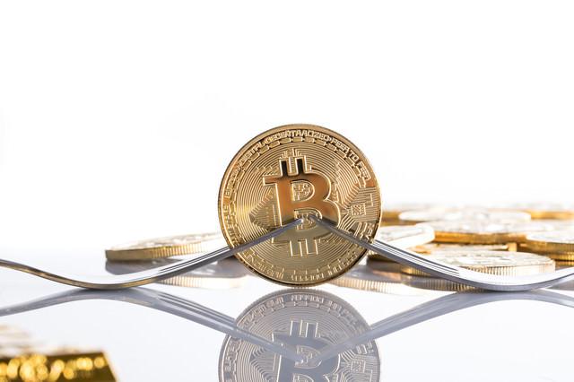 ビットコイン分裂(ハードフォーク)の写真