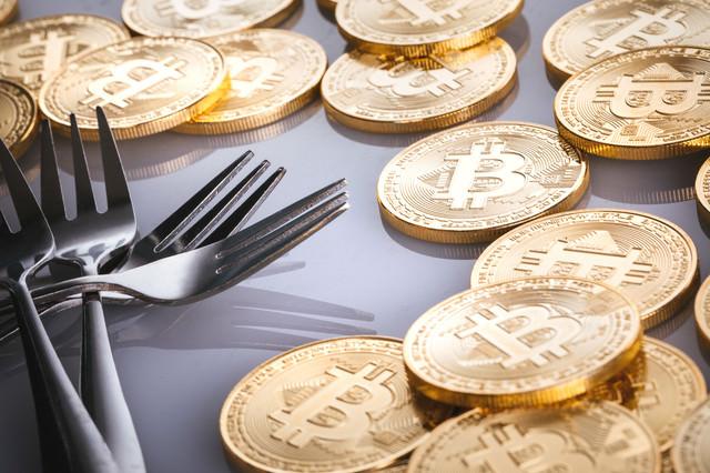 ビットコインハードフォーク(暗号資産)の写真