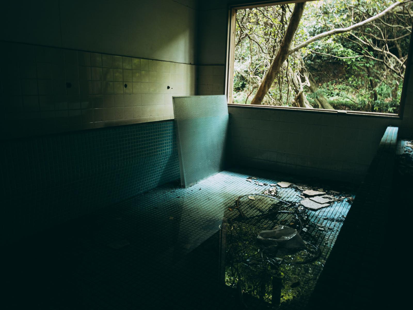 「セメントタイルの水たまりに反映する風景」の写真