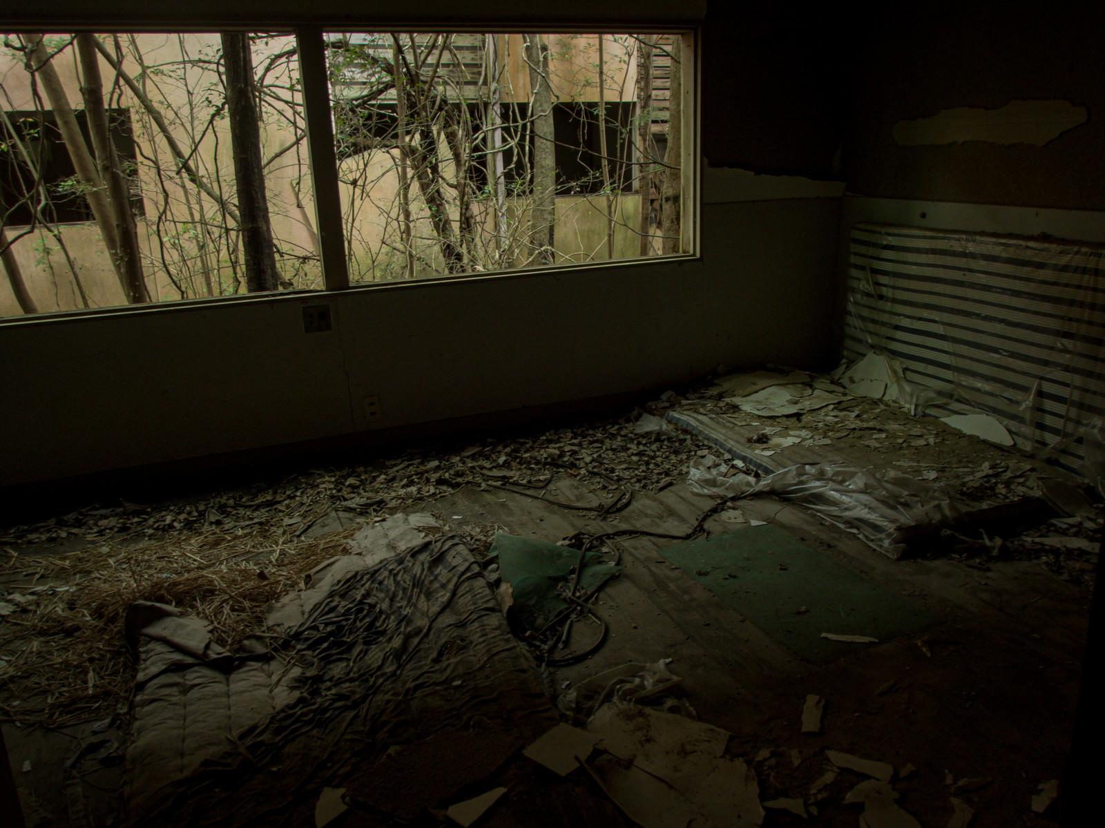 「ボロボロに剥がれた廃部屋とマット」の写真