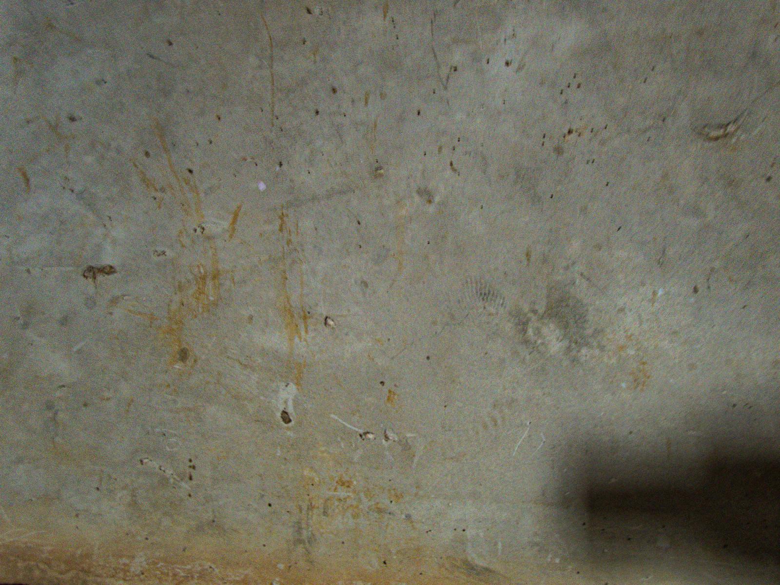 「錆と細かい傷が残る床」の写真