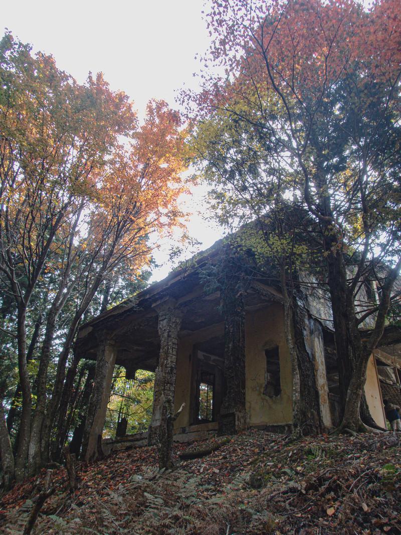 「紅葉した木々と愛宕山ケーブルカー駅舎跡」の写真
