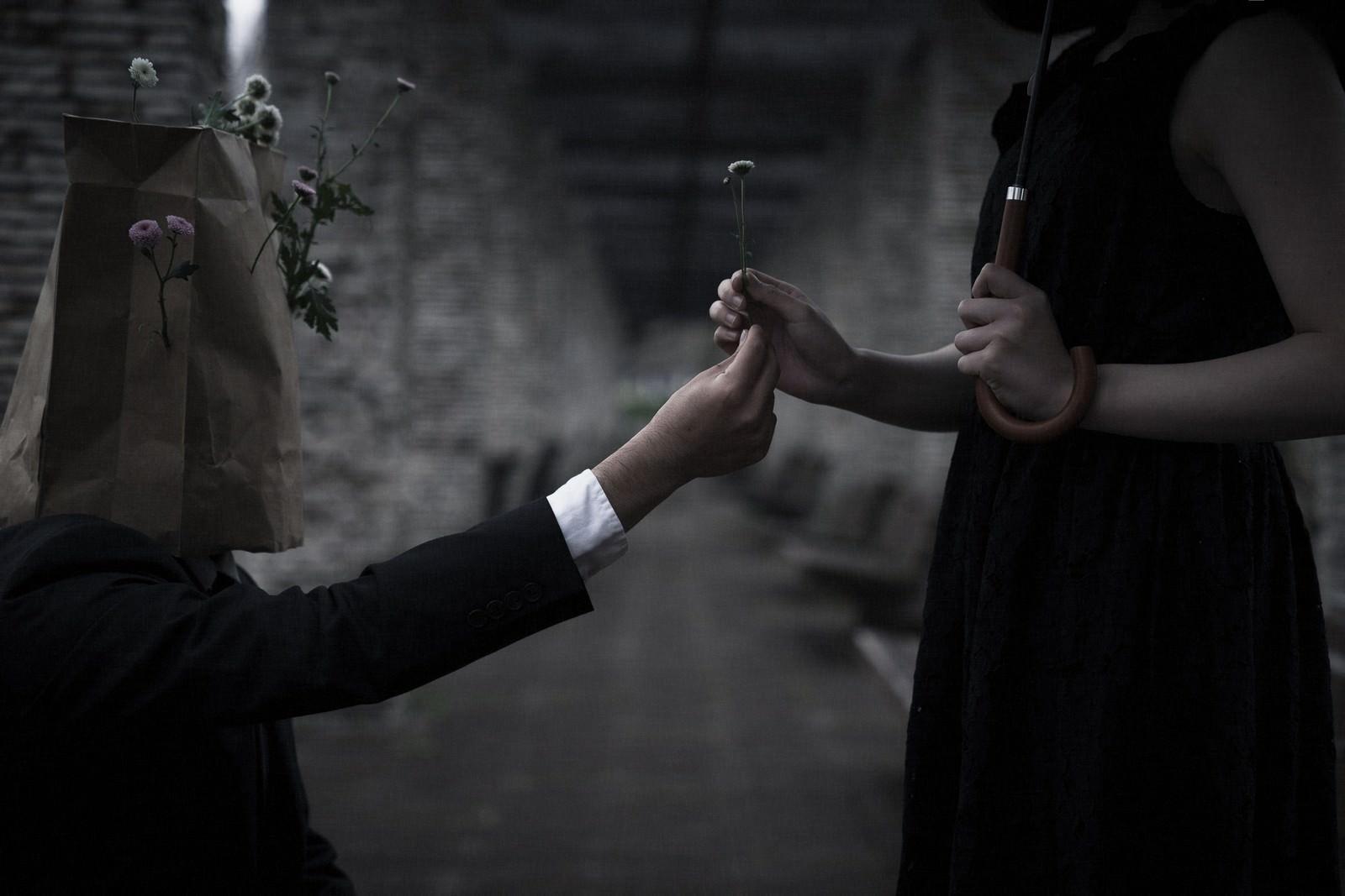 「お花あげます(告白)」の写真