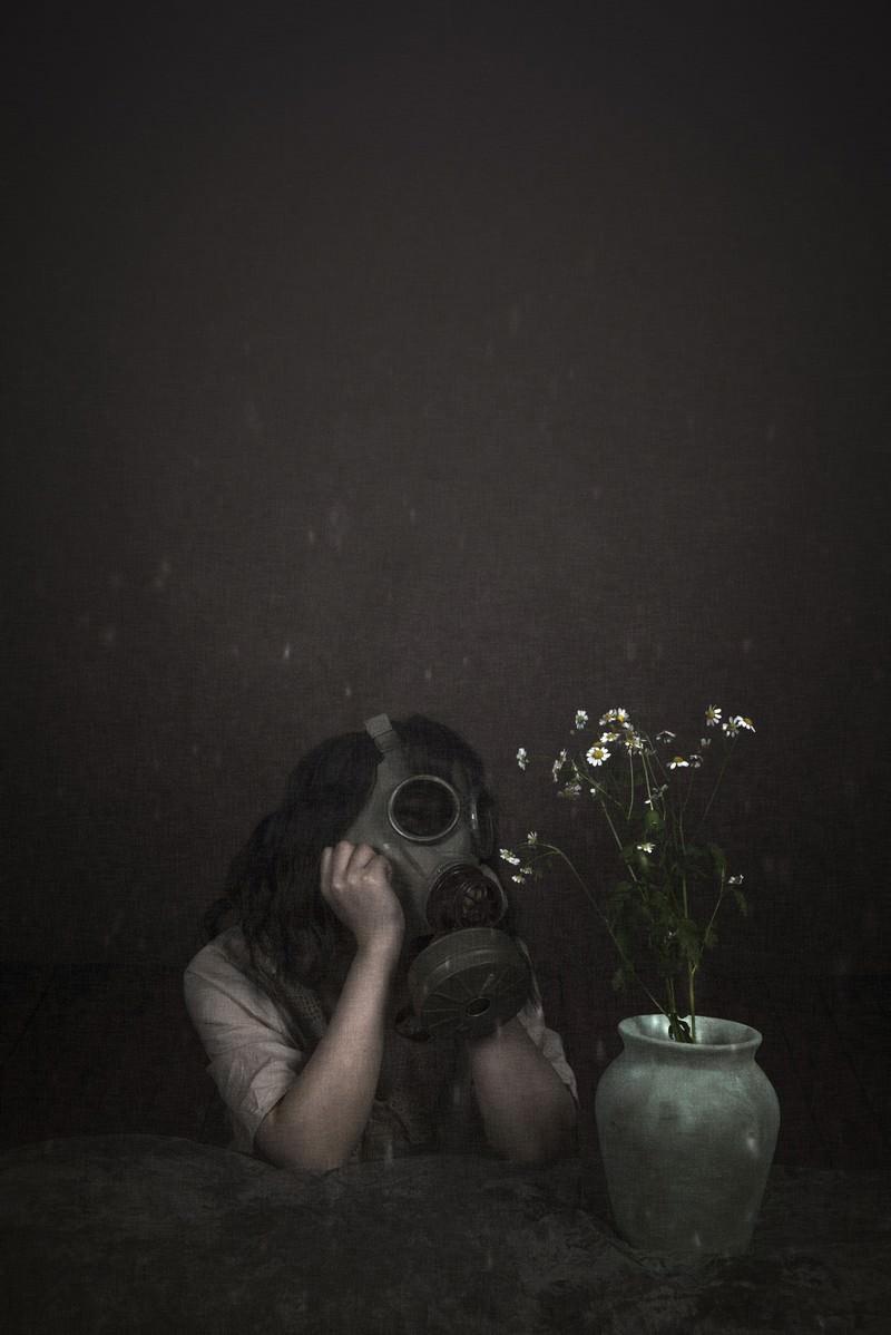 「摘んできた野花から有毒ガスが発生」の写真