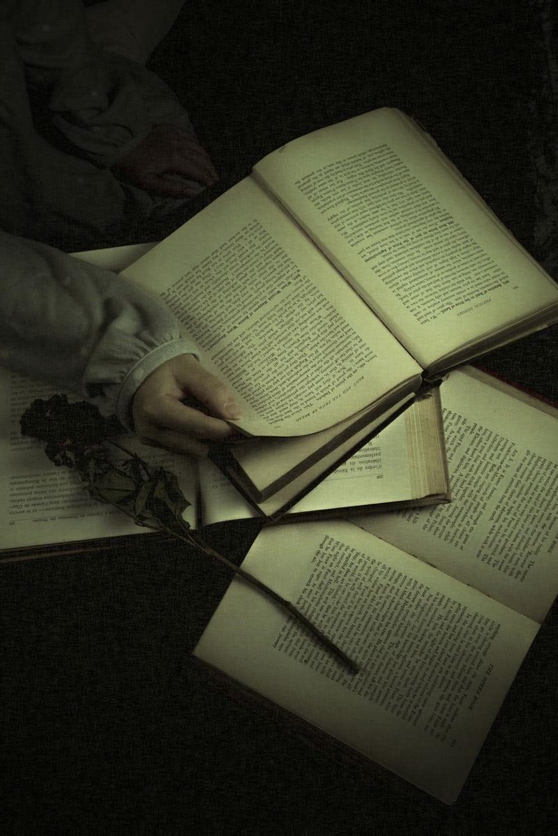 「洋書を読む」の写真
