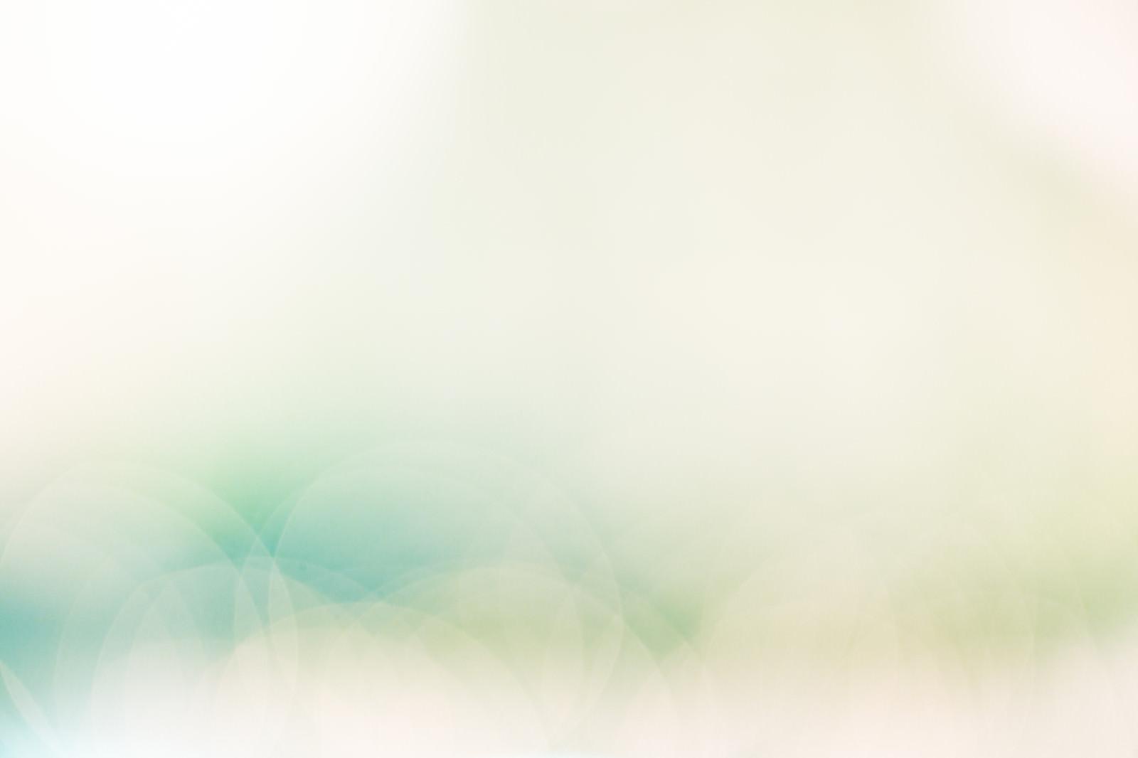 「柔らかい光の中(背景)」の写真
