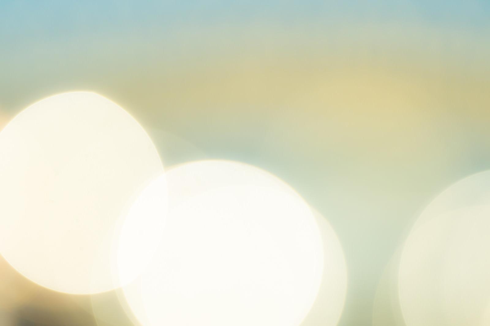 「淡いレモン色の光」の写真