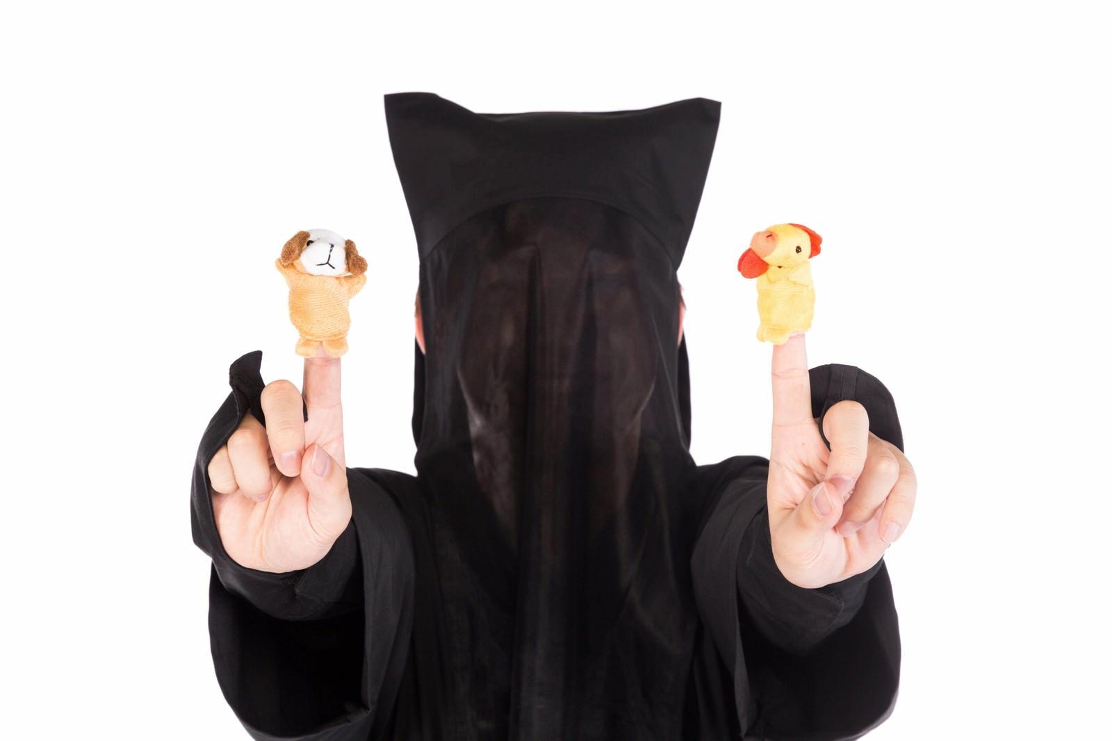 「酷いクオリティの酉と戌の指人形」の写真[モデル:鈴木秀]