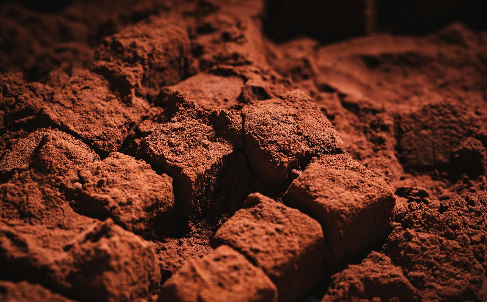 カカオがたっぷりとかかった生チョコレート