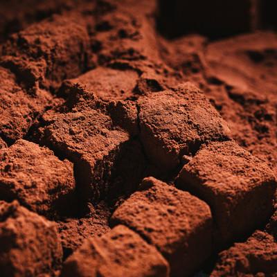 ココアパウダーたっぷり手作り生チョコの写真