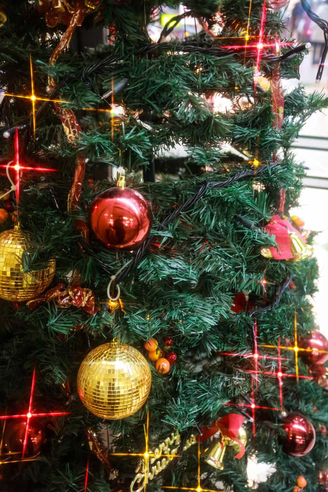 キラキラ光るクリスマスツリーの写真