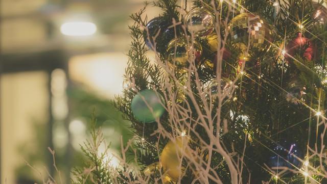クリスマスシーズンの写真