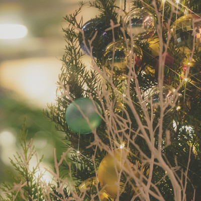 「クリスマスシーズン」の写真素材