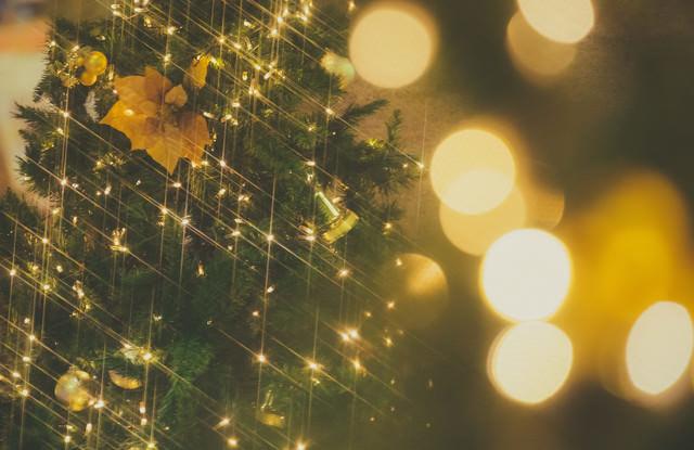 「ライトアップとクリスマスツリー」のフリー写真素材