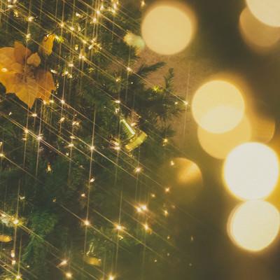ライトアップとクリスマスツリーの写真