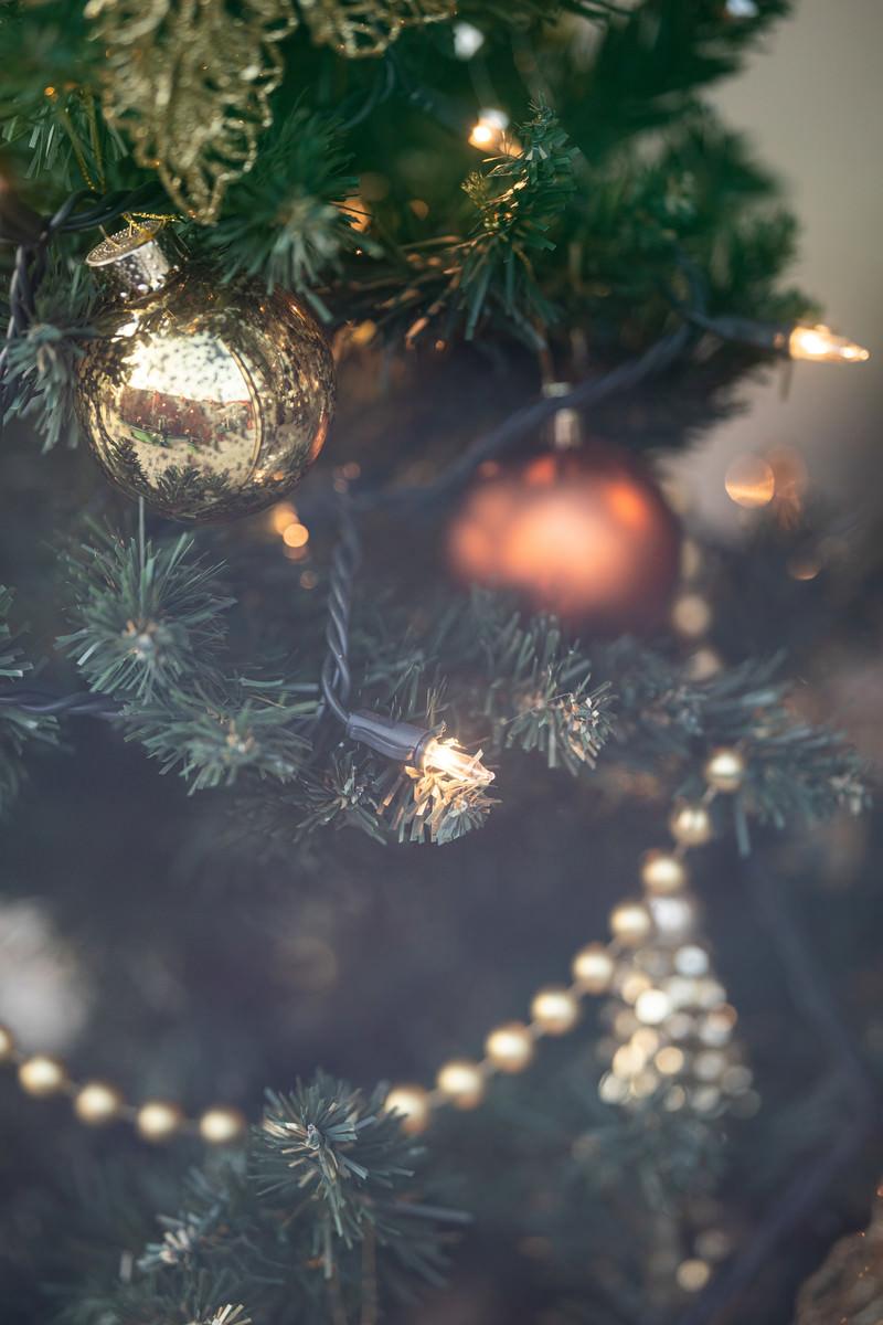 「クリスマスツリーの飾り」の写真