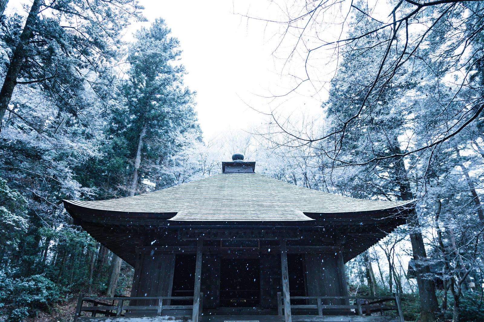 「静かに降り続ける雪と中尊寺経蔵」の写真