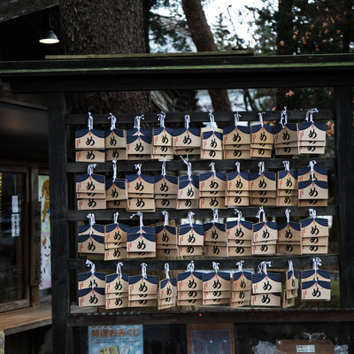 中尊寺峯薬師堂の「め」の絵馬の写真