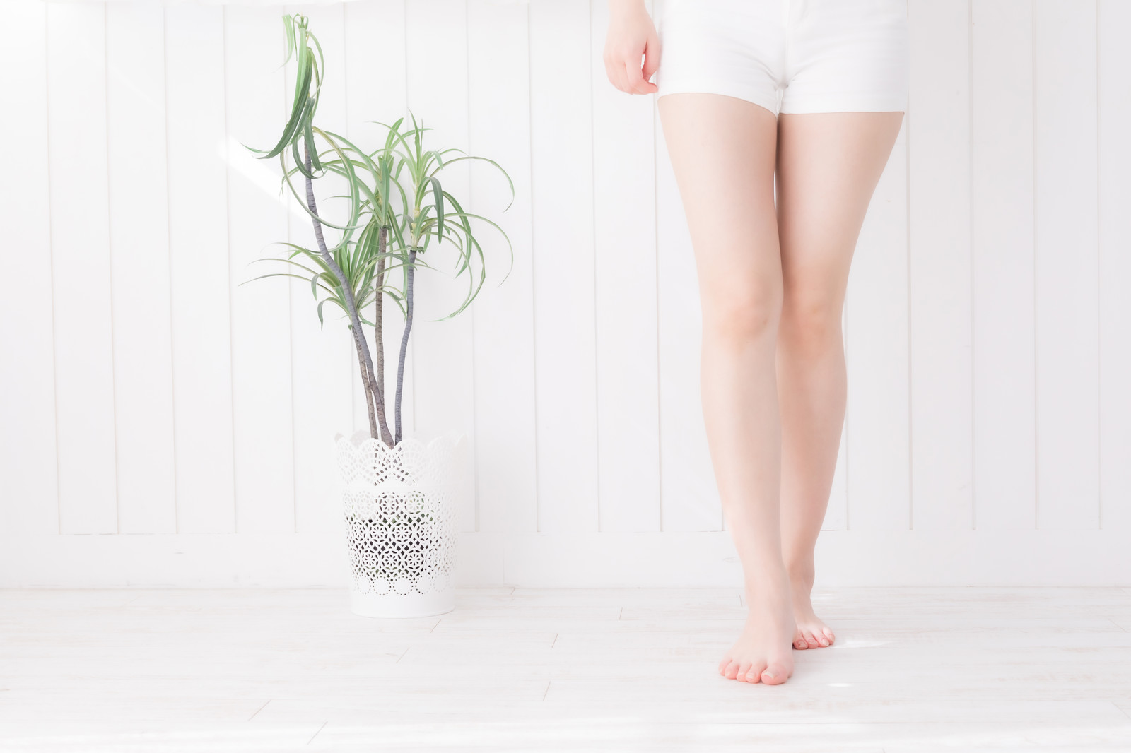 「美しい女性の脚」の写真[モデル:川子芹菜]