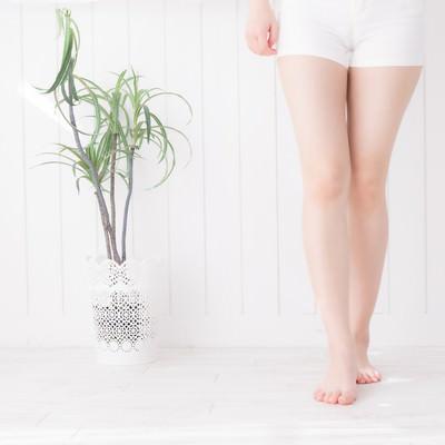 美しい女性の脚の写真