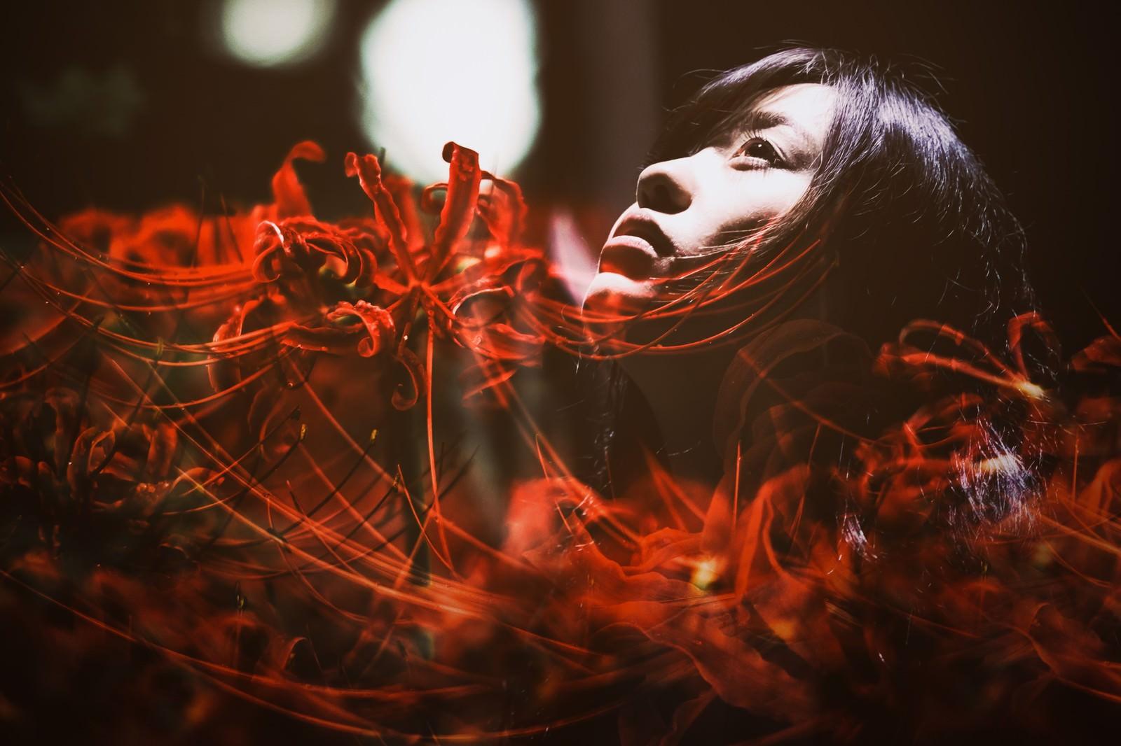 「悲顔花(ヒガンバナ)悲顔花(ヒガンバナ)」[モデル:河村友歌]のフリー写真素材を拡大
