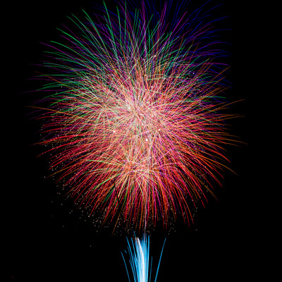 夏の夜空を彩る江戸川区花火大会の写真