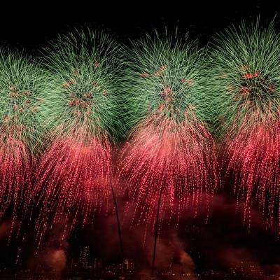 画面に収まりきらない迫力のある打上花火(江戸川区花火大会を招待席で撮影)の写真