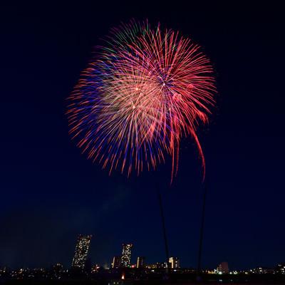 都会の夜空に打ち上げる花火の写真