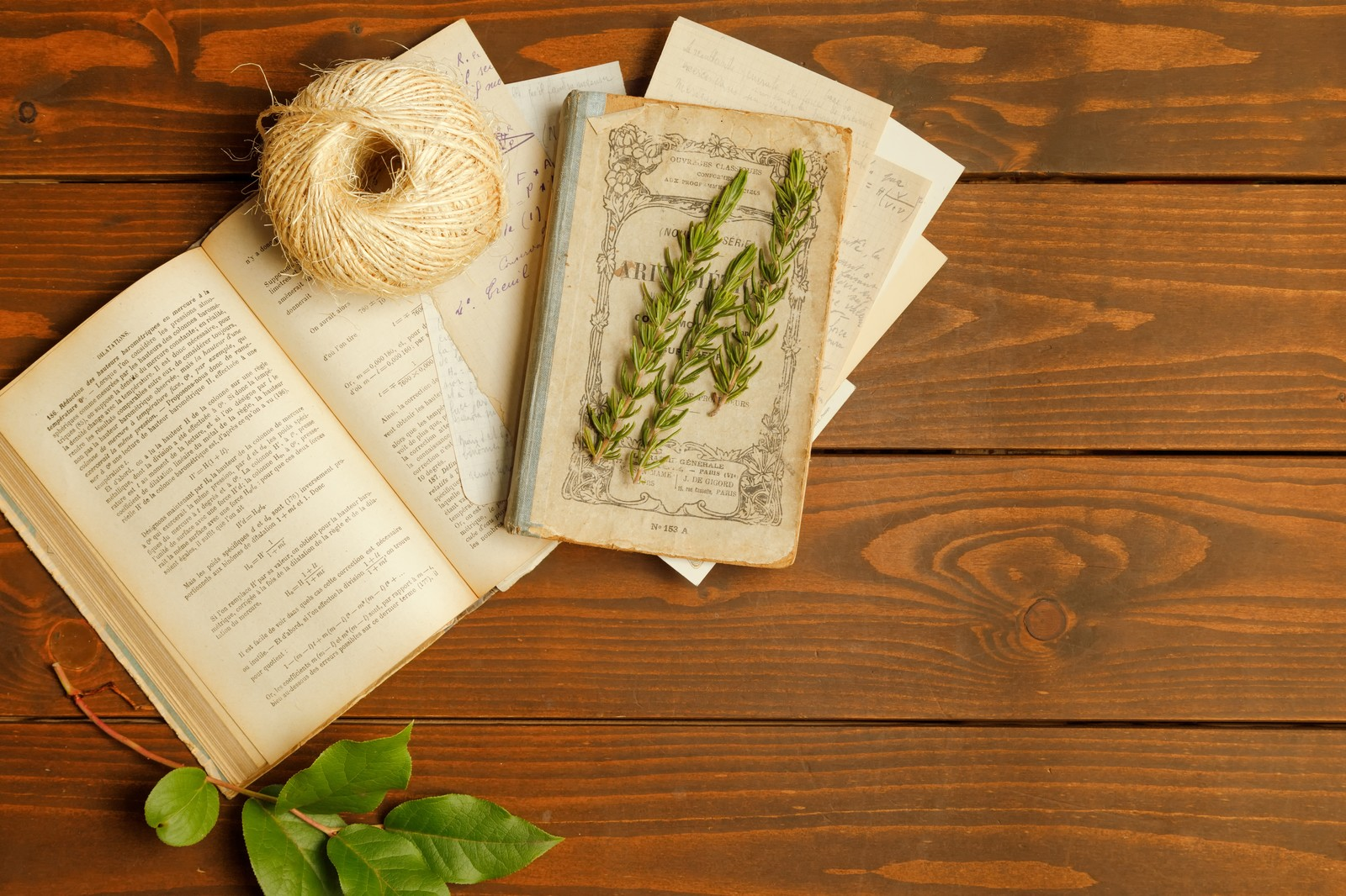 「開かれた古書の上に置かれた紐と薬草」の写真