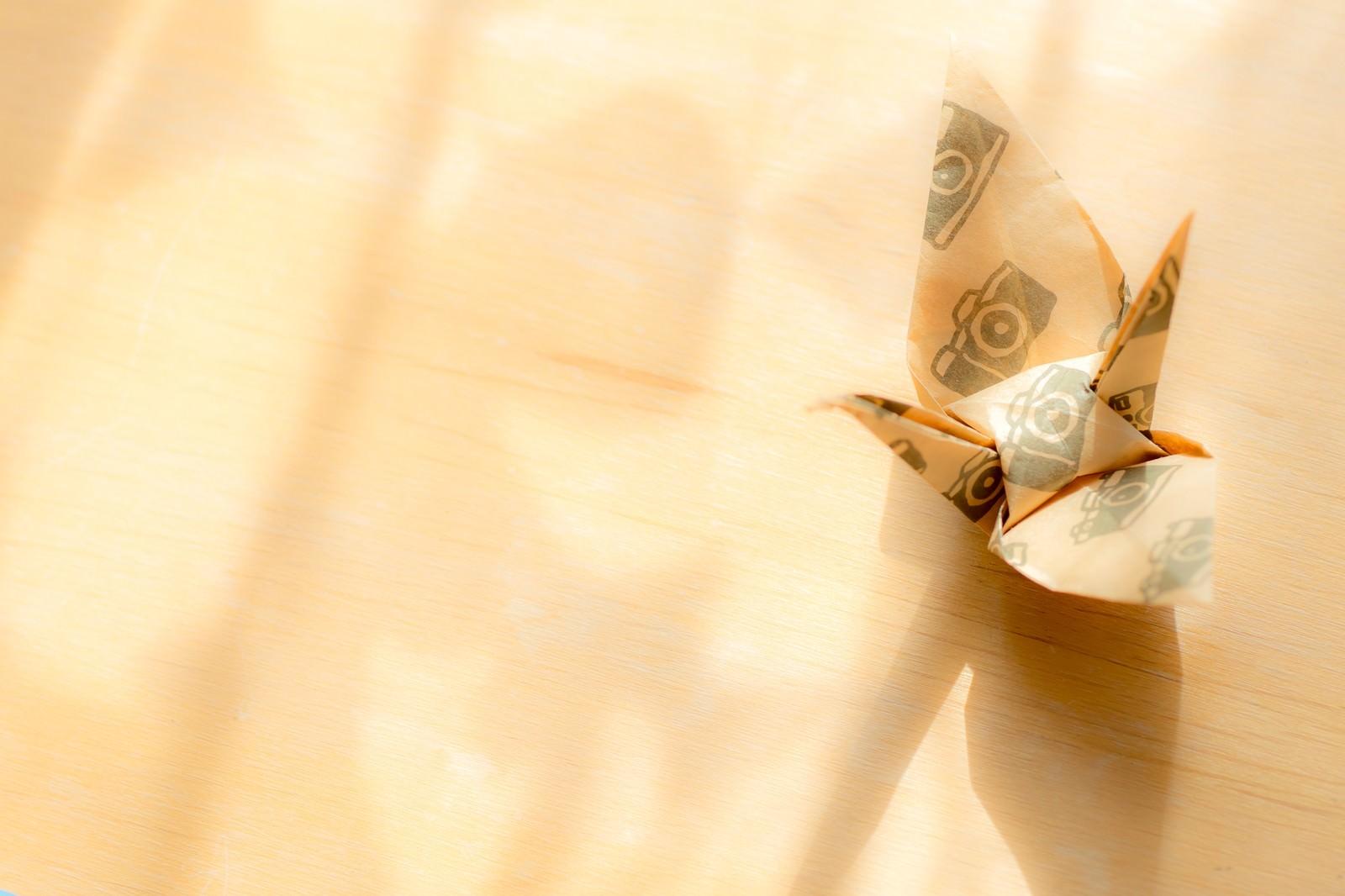 「カメラ柄の折り鶴と射し込む日の光」の写真