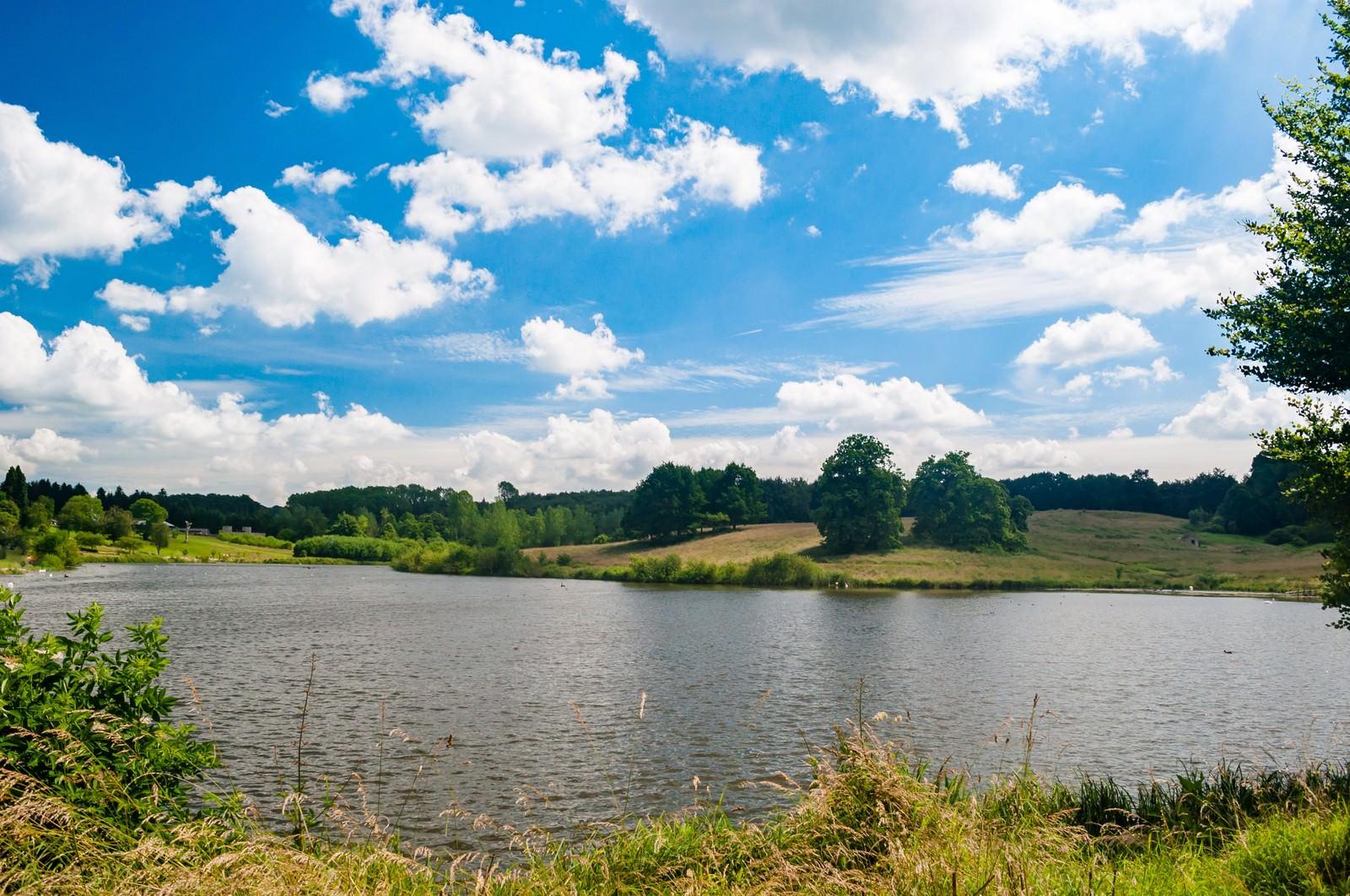 「水辺の自然公園水辺の自然公園」のフリー写真素材を拡大
