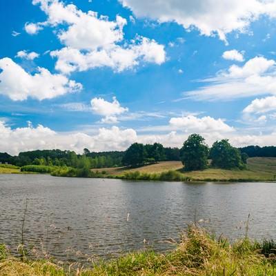 水辺の自然公園の写真