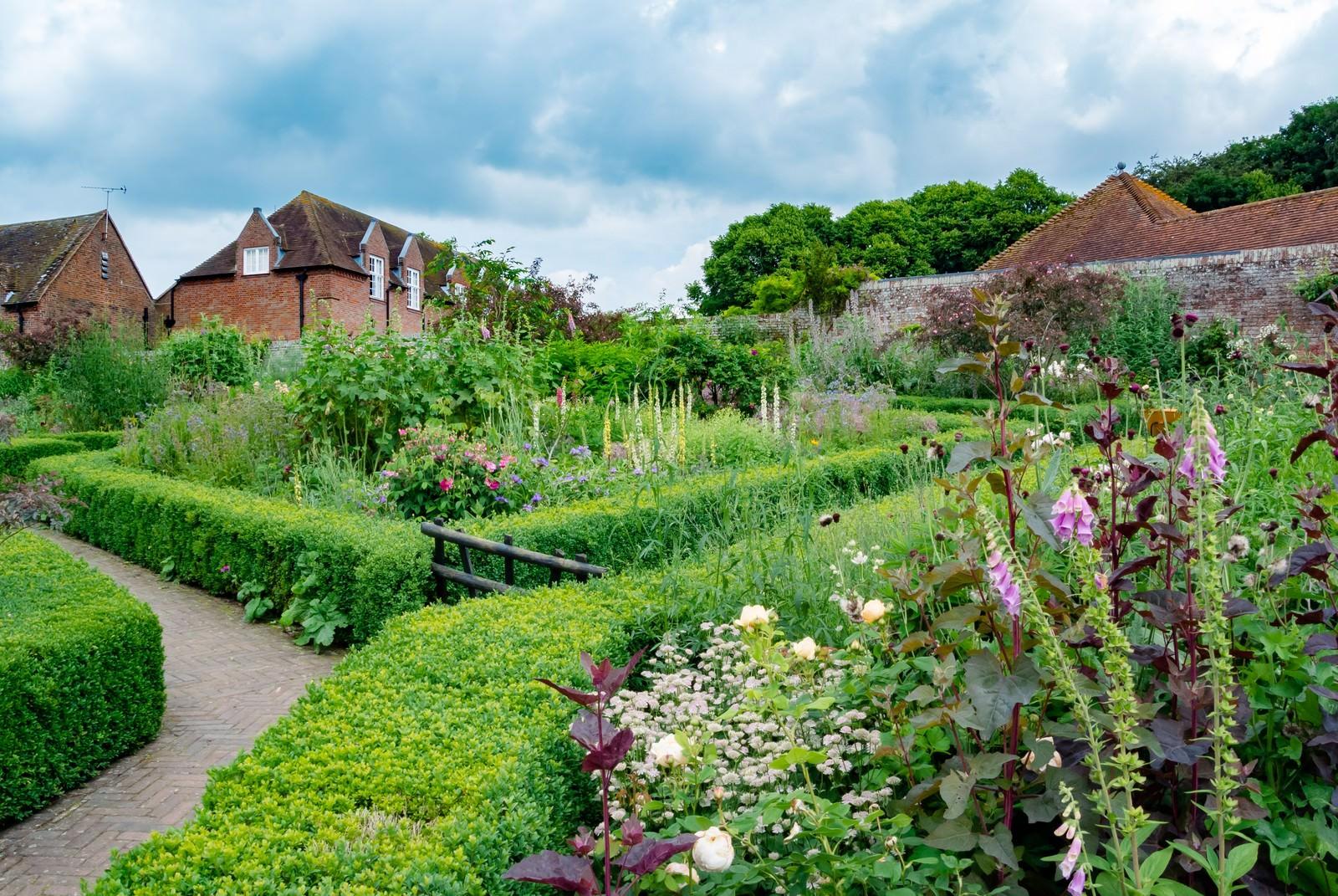 「緑いっぱいの庭 | 写真の無料素材・フリー素材 - ぱくたそ」の写真