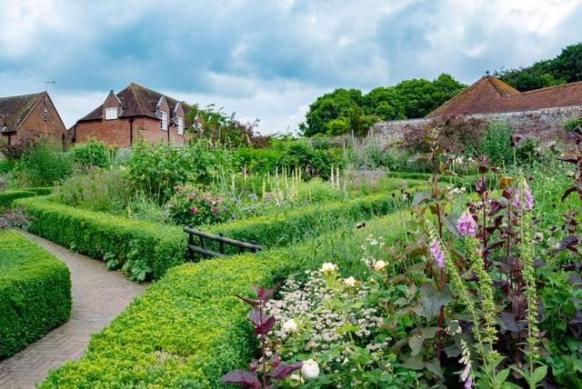 緑いっぱいの庭の写真