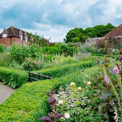 「緑いっぱいの庭」の写真素材