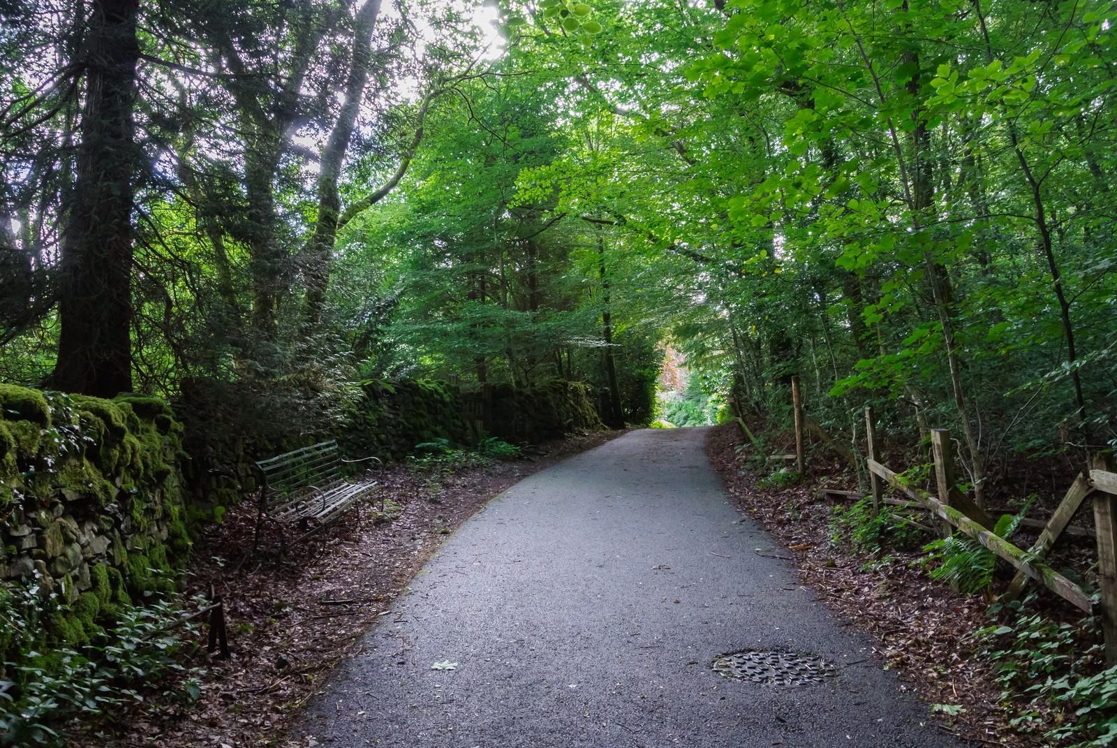 「寂れた遊歩道」の写真