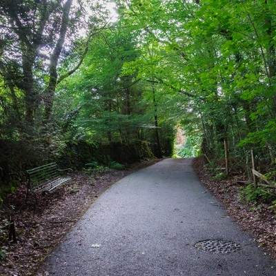 「寂れた遊歩道」の写真素材