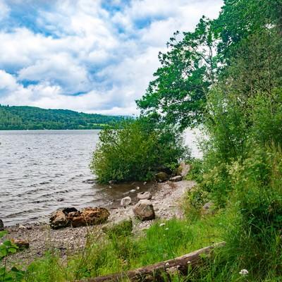 遊歩道から覗くウィンダミア湖の写真