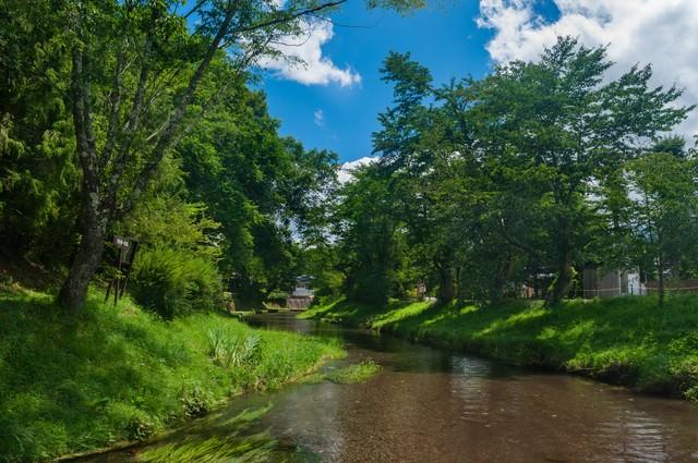 透き通った小川と空の写真