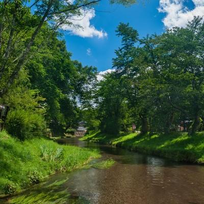 「透き通った小川と空」の写真素材