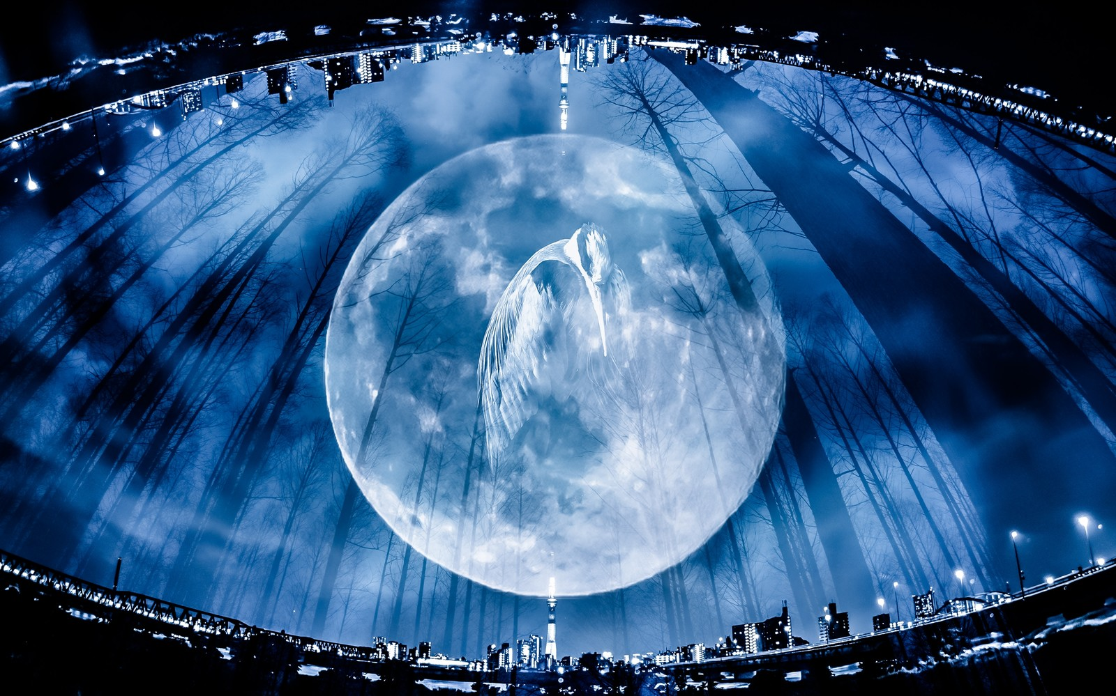 「満月と鶴(フォトモンタージュ)」の写真
