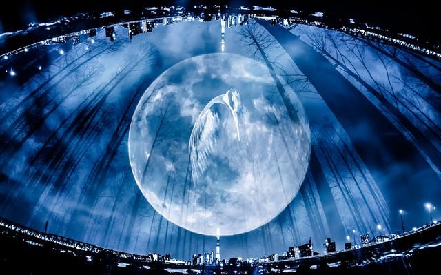 満月と鶴(フォトモンタージュ)