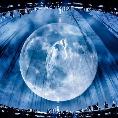 「満月と鶴(フォトモンタージュ)」の写真素材