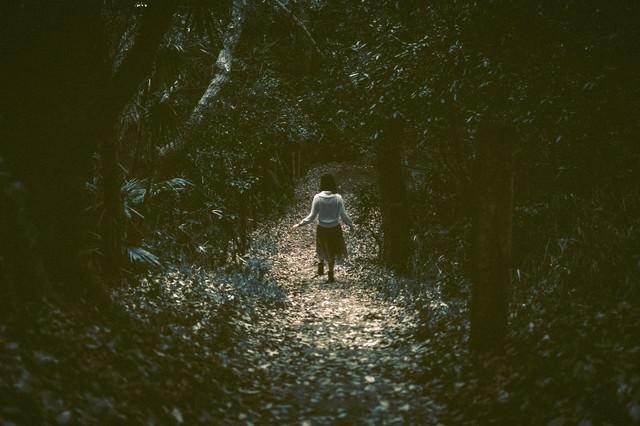 暗い森の中を歩く女性の後姿の写真