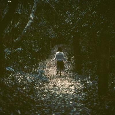 「暗い森の中を歩く女性の後姿」の写真素材