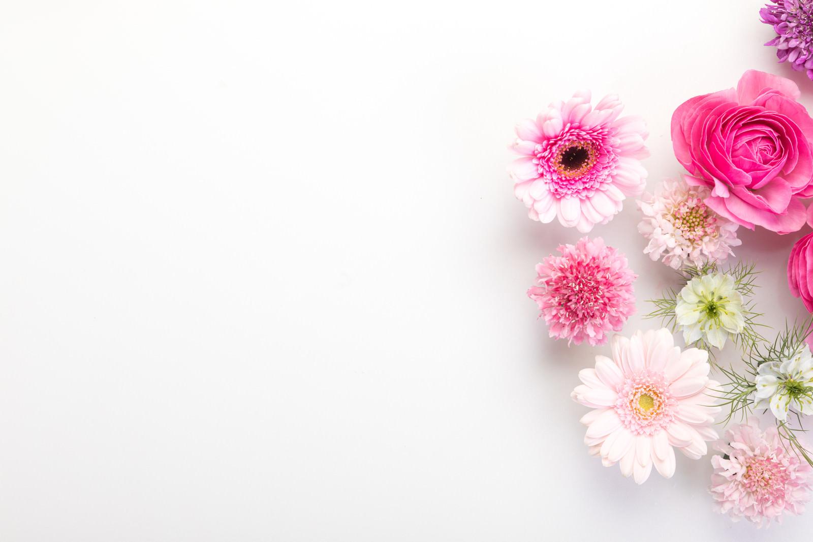 「生花のフレーム」の写真