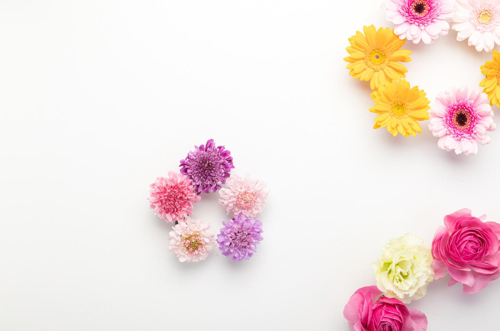 「大中小の円を描くカラフルな花」の写真