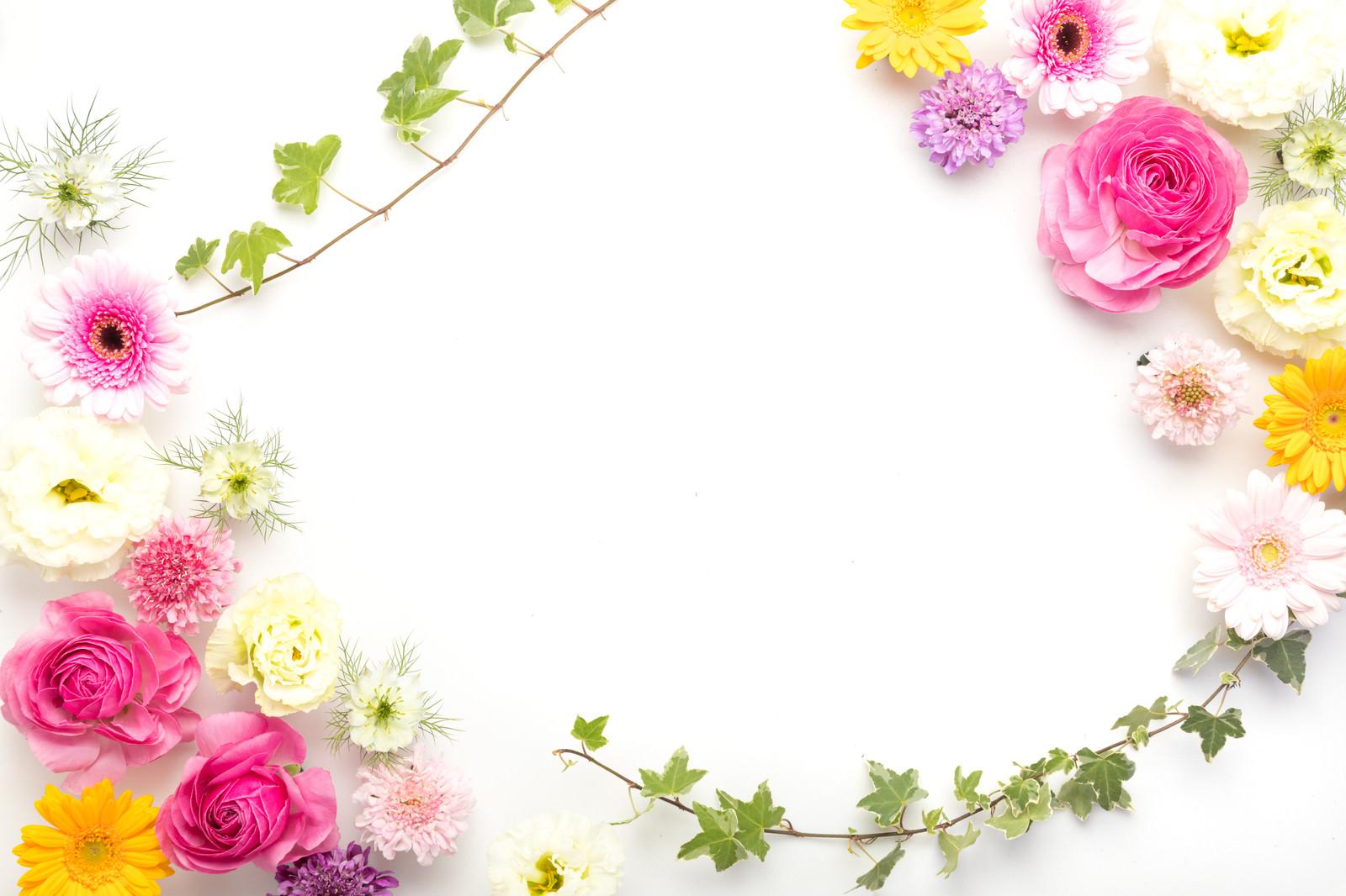 「カラフルな花で彩るフォトフレーム」の写真
